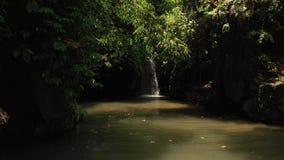 vídeo do voo 4K da cachoeira na selva da ilha de Bali video estoque