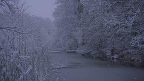 Vídeo hermoso de la naturaleza y del paisaje de la tarde azul nevosa de la oscuridad en Katrineholm Suecia almacen de metraje de vídeo