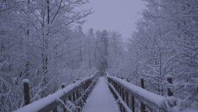 Vídeo hermoso de la naturaleza y del paisaje de la tarde azul nevosa de la oscuridad en Katrineholm Suecia con el puente de mader almacen de metraje de vídeo