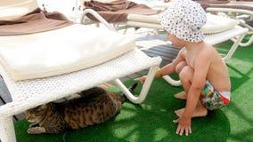 vídeo 4k del niño pequeño sonriente adorable que juega y que mira el gato que se relaja en la playa en el mar metrajes