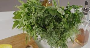 Vídeo lento panorâmico para esverdear vegetais Close-up da rúcula, espinafres, salsa, aneto, vinagre balsâmico, azeite vídeos de arquivo