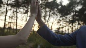 Vídeo 1080p - coroas das árvores com o sol e raios brilhantes da tarde vídeos de arquivo
