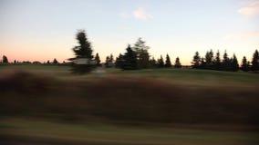 Vídeo que conduce por un campo de golf en la puesta del sol metrajes