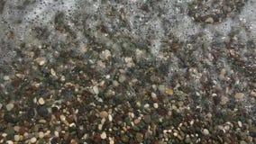 Vídeo y sonido del ruido del mar en un Pebble Beach almacen de metraje de vídeo