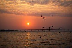 Vínculo del mar del worli de Bandra Imagen de archivo