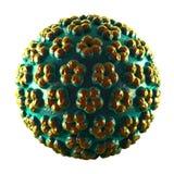 Vírus do papiloma - HPV - isolado no branco Imagem de Stock