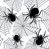 Víspera de Todos los Santos inconsútil con arañas y un Web Fotografía de archivo