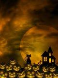 Víspera de Todos los Santos talló el cementerio de la luna del gato de la corrección de la calabaza Imagen de archivo libre de regalías
