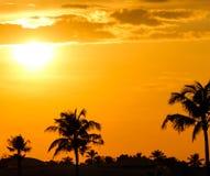 Vísperas del verano Imagen de archivo libre de regalías