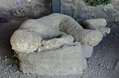 Vítima da erupção de Mt o Vesúvio em Pompeii Foto de Stock