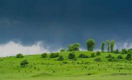 Vóór de regen Stock Fotografie