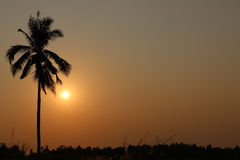 Vóór de zonsondergang Stock Afbeeldingen