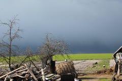 Vóór het onweer Stock Fotografie