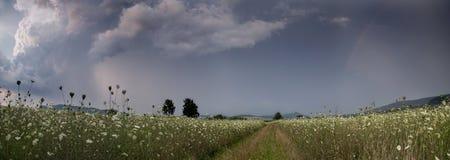 Vóór het onweer, panoramafoto Stock Foto