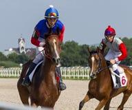 Vóór paardenrennen stock afbeelding