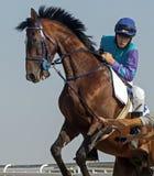 Vóór paardenrennen Stock Foto's