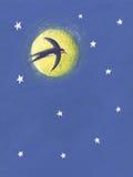 Vôo da andorinha na noite ilustração stock