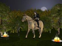 Vôo de noite Fotos de Stock