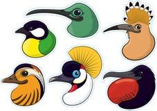 Vögel 4 Lizenzfreies Stockbild