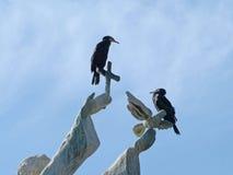 Vögel auf dem Monument Stockbilder