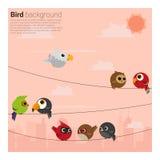 Vögel auf Drahthintergrund Lizenzfreie Stockfotos