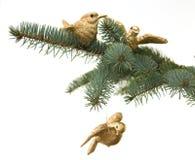Vögel auf Kiefer-Brunch. Weihnachtsdekoration Stockbild