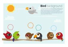 Vögel auf Niederlassungshintergrund Stockbild