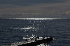 Vögel auf Wellenbrecher stockfotografie