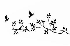 Vögel auf Zweig Lizenzfreies Stockfoto
