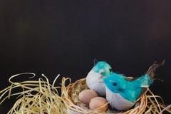 Vögel des aufbereiteten Materials in einem Nest lizenzfreies stockfoto