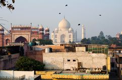 Vögel fliegen über Taj Mahal Panoramablick vom Dach stockbild