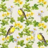 Vögel im Blumengarten - Blumen, Kräuter watercolor Sich wiederholendes Muster Stockfotos