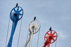 Vögel im Hafen Stockfotografie