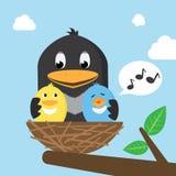 Vögel im Nest Stockfotografie