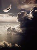Vögel sind vor dem Mond Lizenzfreies Stockfoto
