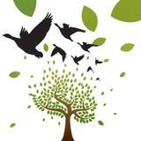 Vögel und Baumvektor lizenzfreie abbildung