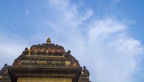 Vögel und Haube eines indischen hindischen Tempels Stockbild