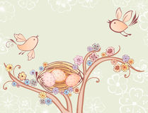 Vögel und Nest Lizenzfreies Stockbild