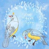 Vögel und Schmetterling auf Wasserfarbhintergrund Stockbilder