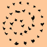 Vögel und Tornado Lizenzfreie Stockfotos