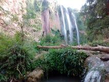 Vörda naturen i tiaretstaden Algeriet arkivbild