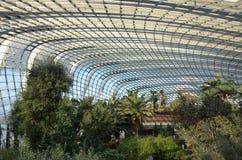 Vördnad av den gröna naturen inom den curvy glass kupolen royaltyfria bilder