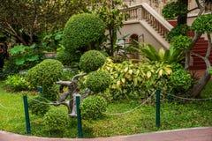 v王宫在曼谷,泰国柚木树庭院艺术 库存图片