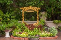 v王宫在曼谷,泰国柚木树庭院艺术 免版税图库摄影