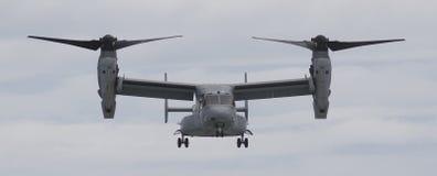V-22白鹭的羽毛航空器 图库摄影