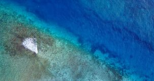 V06974 Aerial flying drone view of Maldives white sandy beach abstract waves water surface texture on sunny tropical stock video