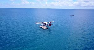 V06403 Aerial flying drone view of Maldives white sandy beach airplane seaplane sunny tropical paradise island with aqua. Aerial flying drone view of Maldives stock video