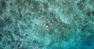 V04074 Aerial flying drone view of Maldives white sandy beach 2 people young couple man woman snorkeling swimming diving Stock Photography