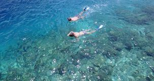 V04054 Aerial flying drone view of Maldives white sandy beach 2 people young couple man woman snorkeling swimming diving Royalty Free Stock Photo