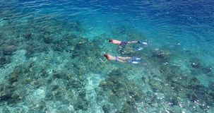 V04053 Aerial flying drone view of Maldives white sandy beach 2 people young couple man woman snorkeling swimming diving Royalty Free Stock Photos